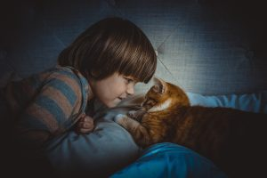 Child and a cat