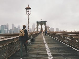 moving to Brooklyn with a pet and exploring the city
