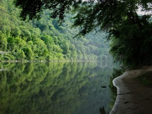 A water body surrounded by trees and greenery suggesting that the availability of outdoor activities is one of the things you should have in mind when moving in Delaware.