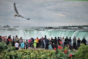 People looking at the Niagara Falls.