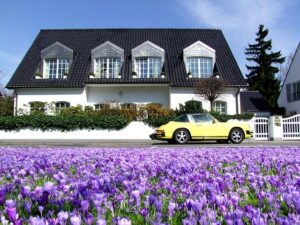 A charming family home behind the field of purple flowers.