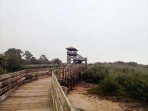 A brown wooden bridge. Some of the nicest places in Pinellas County have pretty amazing nature close-by.