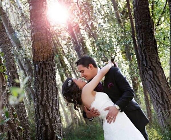 A married couple is planning to find one of the best neighborhoods in Mount Prospect for newly-weds.
