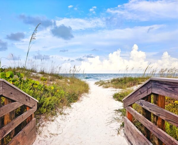 a beach in Florida, read about how to find decent movers in Bradenton